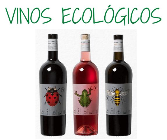 cata de vinos ecologicos zaragoza, cata de vino para mujeres zaragoza
